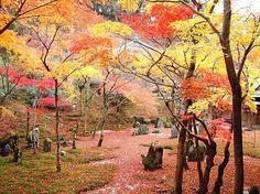 福岡 - 太宰府 - 光明禅寺