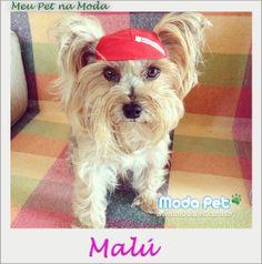 MEU PET NA MODA   Conheçam a Malú! Ela estava pronta para ir à praia usando Boné Esportivo quando foi fotograda pela mamãe babona. Ficou ou não uma graça? #meupetnamoda