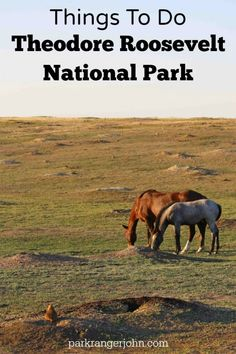 Things to do Theodore Roosevelt National Park in North Dakota include camping, hiking, taking scenic drives, having picnics and seeing the parks abundant wildlife like Prarie Dogs, Wild Horses, and Bison. #Theodoreroosevelt #theodorerooseveltnationalpark #nationalparks #findyourpark via @ParkRangerJohn