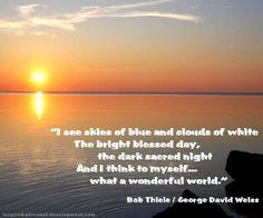 I see skies of blue...