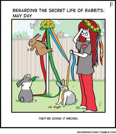 #bunny #rabbit #bunnies #May