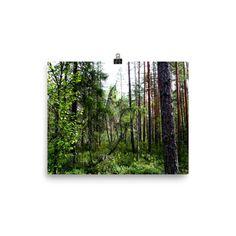 Forest Spirits Photo Paper Poster Poster Photography, Poster Prints, Posters, Online Portfolio, Home Art, Illustrator, Original Paintings, Photographs, Illustration Art