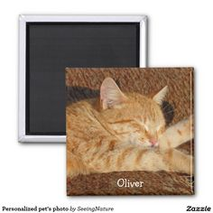 Shop Personalized pet's photo magnet created by SeeingNature. Personalize it with photos & text or purchase as is! Wedding Color Schemes, Wedding Colors, Photo Magnets, Cat Sleeping, Create Your Own, Have Fun, Great Gifts, Pets, Creative