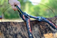 Handle on Painted Leather Dog Harness