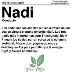 Hoy es #miercolesdesanscrito y la palabra de hoy es #Nadi