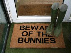 This needs to be outside our apt. People walk in and unexpectedly have a bunny dart at them all the time.