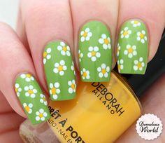 Video Tutorial: Spring Daisies