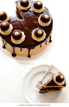 peanut butter ball cake
