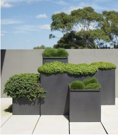 Grey planters - great play with heights