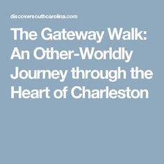 The Gateway Walk: An Other-Worldly Journey through the Heart of Charleston