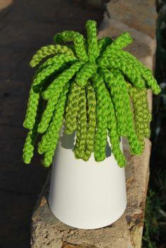Cactus sinsol 3 / Tramalia - Artesanio