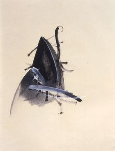 1stdibs.com | Jay DeFeo - Untitled (Jewelry Series)