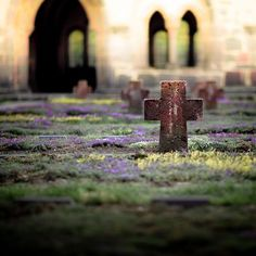 The Abbey of Arnsburg. Cemetery.