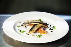 Pan fried herring- Jack Stein, Stein Restaurants