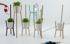 The Roots Modular Planter System by Alberto Sanchez for MUT