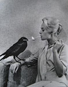 Tippi and bird (This pin is such a LOL) Love it.