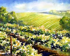 Sonoma Vineyard watercolor painting demo by Jennifer Branch
