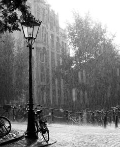 2,879 vind-ik-leuks, 46 reacties - Chantal Janzen (@chantaljanzen.official) op Instagram: 'In Amsterdam regent het vandaag tranen'