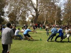 Tug of War at our Company Picnic