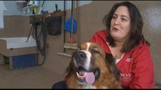 Thanksgiving dinner for dogs helps humans, too - WCAX.COM Local Vermont News, Weather and Sports-