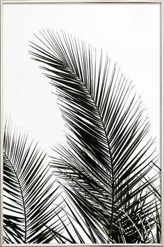 Palm Leaves 1 en Affiche sous cadre en aluminium | JUNIQE
