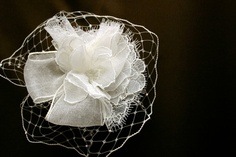 Birdcage- style veil with French lace
