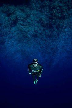Freediver.