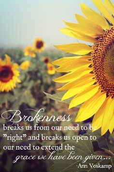 Brokenness breaks us from the need to be right and breaks us open to our need to extend the grace we have been given Words Quotes, Wise Words, Me Quotes, Sayings, One Thousand Gifts, Sunflower Quotes, Sunflower Wallpaper, Cristiano, Bible Verses