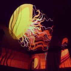 Tonight's A jellyfish! Painting & animating using for iPad. Jellyfish Drawing, Jellyfish Painting, Jellyfish Aquarium, Blue Jellyfish, Living In Mexico City, Light Painting, Clipart, Illustration, Graffiti