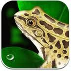 Educational Science Apps. http://ctserc.libguides.com/aecontent.php?pid=554951&sid=4603654