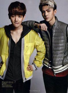 Baekhyun Sehun ♡ #EXO // The Celebrity Magazine