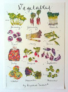Vegetables in Season - A4 Print | Menu item for category listing module 189 | Bénédicte Caillat