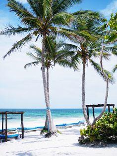 karibik, caribbean, tulum, beach, hängematte, Paradies