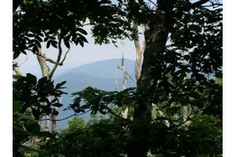 View from The Priest on the Appalachian Trail (Shenandoah National Park area)