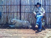 Don Imus and his dog at his ranch.