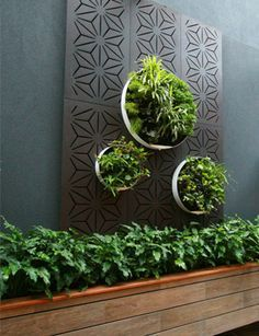Showcased in Australia Garden Show Silver Medal Garden. 1200 x Panels (HxW) Screen Privacy(Blockout) Available at Chippy's Outdoor Outdoor Areas, Outdoor Walls, Outdoor Wall Planters, Outdoor Wall Art, Patio Wall, Planter Pots, Outdoor Screens, Outdoor Privacy, Privacy Screens