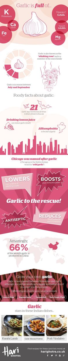Garlic infographic showing the health benefits of Garlic (If I'm in a hurry I will just chew it really fast. Natural Cures, Natural Health, Natural News, Health And Nutrition, Health And Wellness, Garlic Health Benefits, Food Facts, Healthy Tips, Medicinal Plants