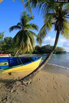 L'anse Corps de Garde à Sainte-Luce. Une plage très agréable avec des jeux pour enfants, plusieurs restaurants et une école de voile formant à la pratique de la Yole, bateau traditionnel de la Martinique.