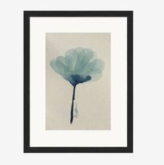 A personal favorite from my Etsy shop https://www.etsy.com/ca/listing/473398889/watercolor-flower-blue-flower-blue