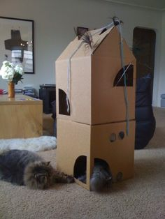 Another view of the two-storey cardboard cat house