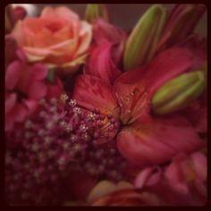 More farmers market flowers!