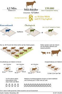 Viehzeug in Deutschland – Die Infografik zu - Novel Nooks Web Design Trends, Vegan Facts, Global Awareness, Poster Design, Animal Facts, Information Graphics, Teacher Hacks, Save The Planet, Infographic Templates