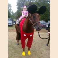 homemade horse costumes | Halloween Pet Costume Contest Favorites - Pet Costumes - Good ...