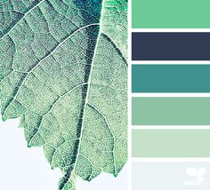 { leaf hues } - https://www.design-seeds.com/in-nature/nature-made/leaf-hues