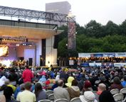 If you are a lover of music then you have to attend the Chicago Blues Fest at some point! Great music, great food and an overall fun experience!