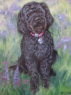 Custom Pet Portrait Labradoodle Painting in Acrylic by HopeLaneArt Animal Paintings, Animal Drawings, Black Labradoodle, Paint Your Pet, Wow Art, Drawing Skills, Dog Portraits, Pet Pictures, Labradoodles