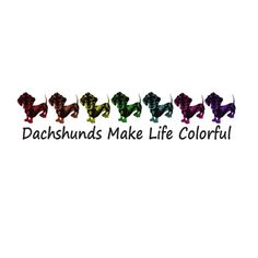 ♥♥♥♥♥♥ dachshunds make life colorful