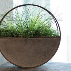 Round up your plants for the Foreside Round Metal Flower Hanging Planter. The circular planter is ready for real or faux decor outside and finished off with a rust colour along the brims. Plastic Planter Boxes, Wood Planter Box, Window Planter Boxes, Glass Planter, Planter Pots, Metal Hanging Planters, Rustic Planters, Outdoor Planters, Hanging Plants