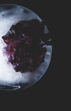 Frozen roses - Untitled by Thinh Dong | Deep red shades of burgundy