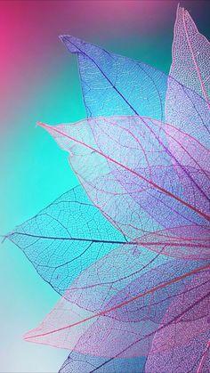 Wallpaper Backgrounds - Colorful wallpaper - Leaf - Wildas Wallpaper World Wallpapers Android, Android Wallpaper Colour, Phone Screen Wallpaper, Tumblr Wallpaper, Aesthetic Iphone Wallpaper, Galaxy Wallpaper, Colorful Wallpaper, Cellphone Wallpaper, Cool Wallpaper